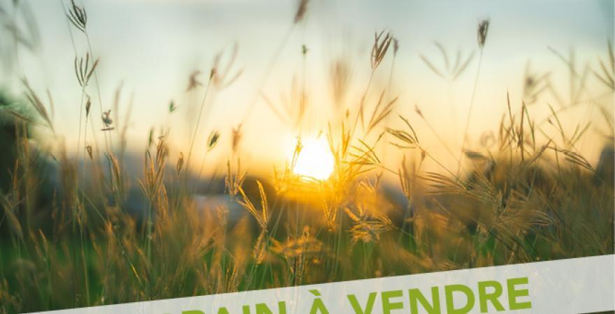Terrains à vendre à Nieul sur Mer, la Rochelle   Villa Tradition